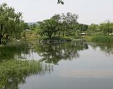 봄 호수정원이미지