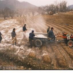 규산질비료 밭 살포