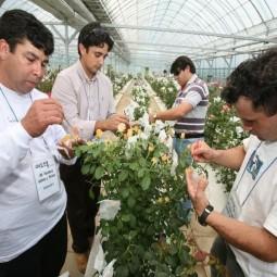 외국인 농업기술 전수