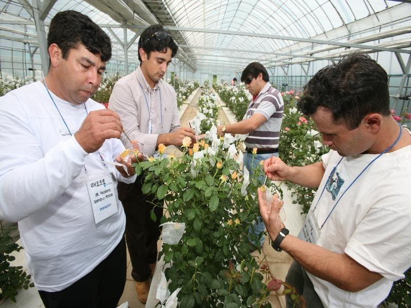 외국의 공무원과 농업인에게 새로운 농업기술을 전수하고 있다.