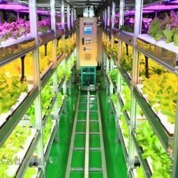 기상이변 등 농업환경이 날로 어려워지고 있는 현실에 로봇과 인공조명을 활용한 농업이 미래 농업이 될것으로 예상한다.