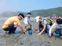 안산 종현 어촌체험마을 대표 이미지